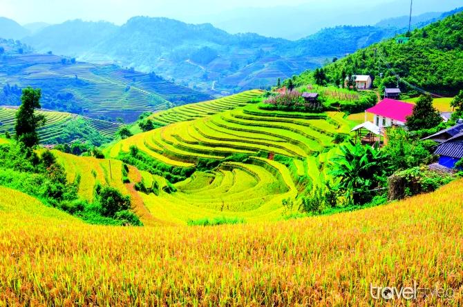 La Pan Tan, Βιετνάµ