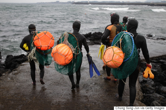 """JEJU, SOUTH KOREA - NOVEMBER 06: South Korean haenyeo enter the water to catch turban shells and abalones on November 6, 2015 in Jeju, South Korea. """"Haenyeo,"""" or Sea Women are the female divers in Jeju Island. In 2014, South Korea applied to UNESCO to add the haenyo to its Intangible Cultural Heritage List, and it has been under examination by the committee. (Photo by Chung Sung-Jun/Getty Images)"""