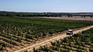10 πόλεις του… κρασιού! Τop προορισμοί στην Ευρώπη, αναμεσά τους και ένας ελληνικός