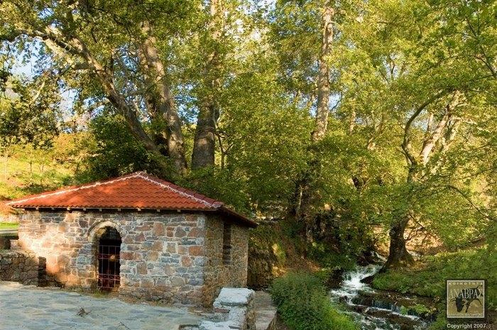 Και όμως υπάρχει!Το χωριό της Ελλάδας στο οποίο οι 500 κάτοικοί  ζουν σαν Κροίσοι!Δείτε τι απίστευτο συμβαίνει!(Photos)