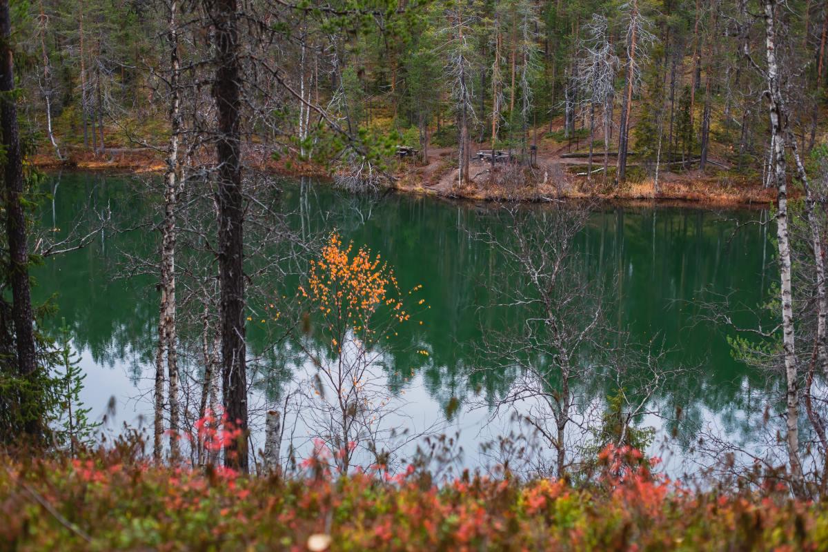 Oulangan Kansallispuisto, εθνικός δρυμός  Φινλανδία