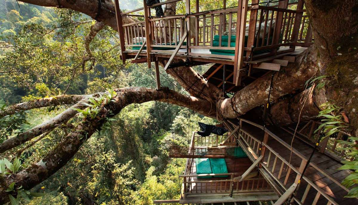 The Gibbon Experience Treehouse, Λάος - hotel