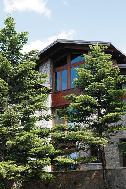 Απίθανο σπίτι στον Παρνασσό, περιτριγυρισμένο από έλατα και τρομερή θέα! (photos)
