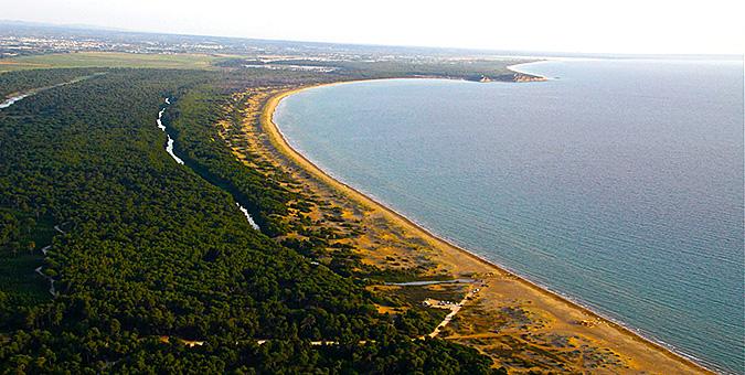 Παραλία Καλόγρια