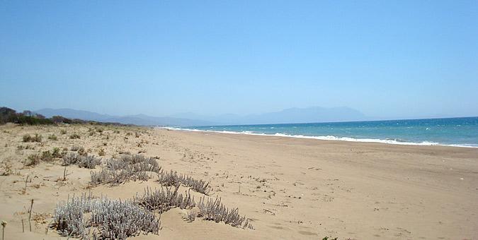 Παραλία Καϊάφας, Ηλεία