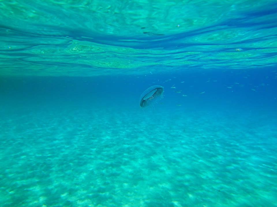 mykonos under the surface