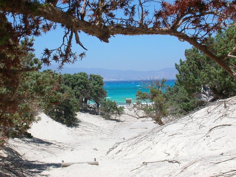 Το ελληνικό νησάκι με τα κοχύλια,το κεδρόδασος και τα καταγάλανα νερά...(photo&video)