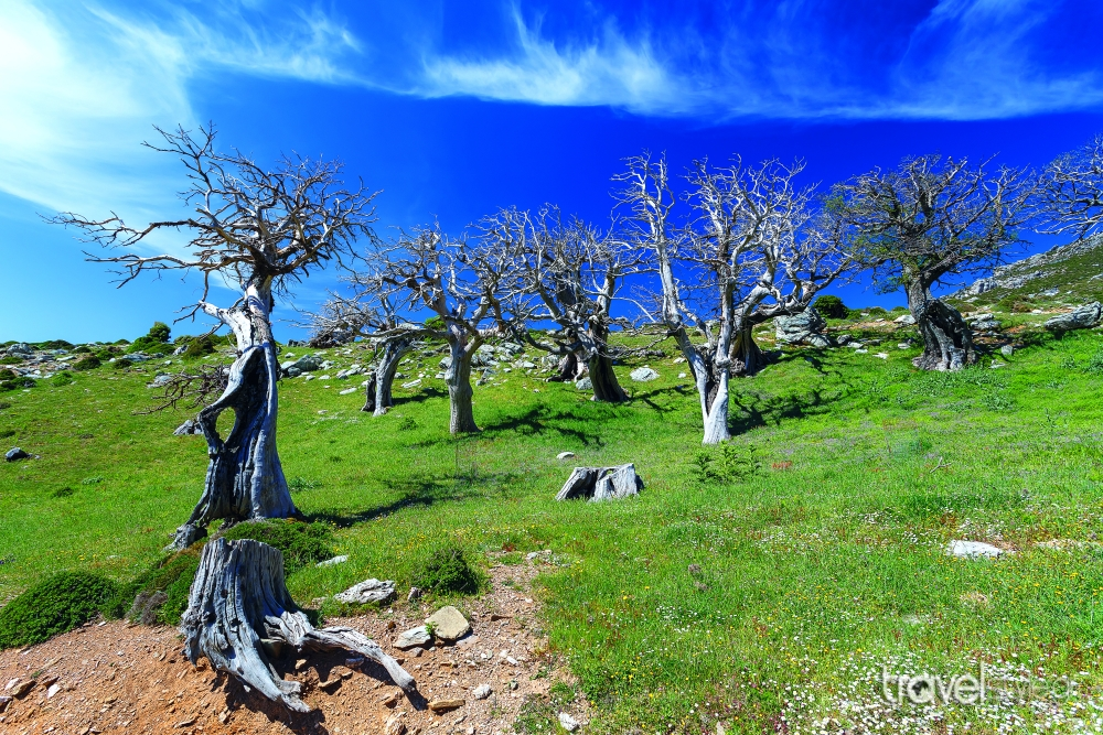 shutterstock_422273446 The 23 secret treasures of Evia that you must first discover!