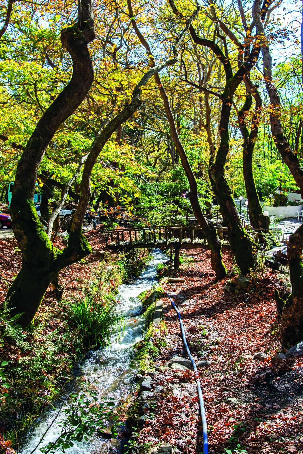 Μέσα τις ομορφιές της φύσης,  Άνω Πορόια, Σέρρες