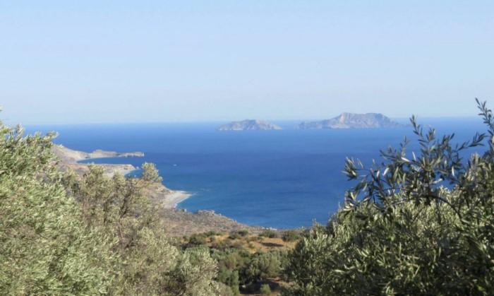 Η παραδεισένια καμπίνα στην Κρήτη με τις αιωνόβιες ελιές και την απίστευτη θεά