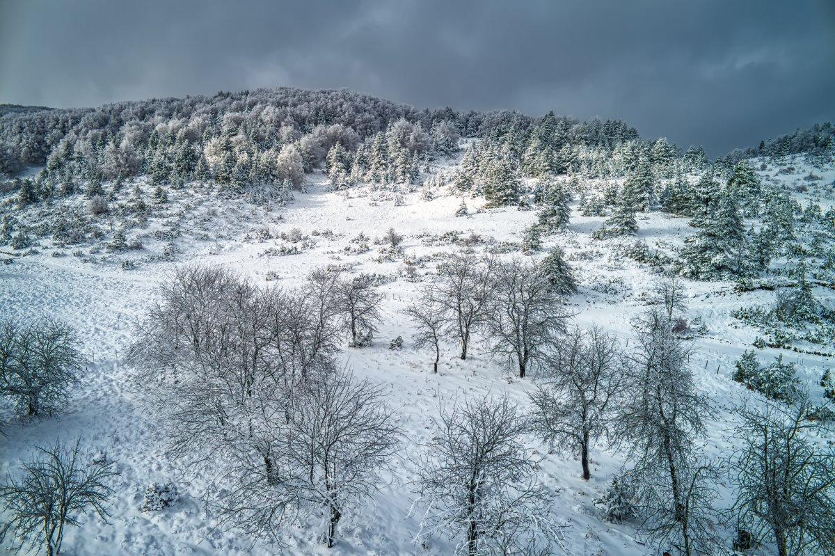 Το χιονισμένο Βέρμιο