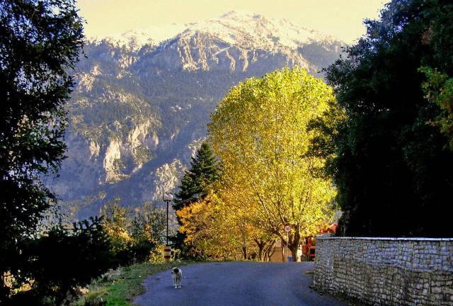 Ορεινή Ναυπακτία φύση