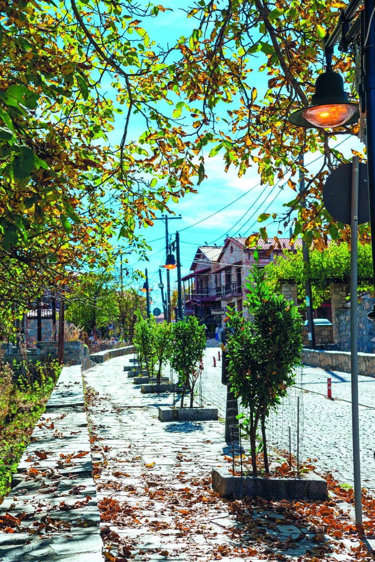 Παλαιός Άγιος Αθανάσιος, κεντρικός δρόμος του χωριού