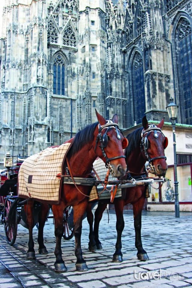 Άμαξα στη Βιέννη