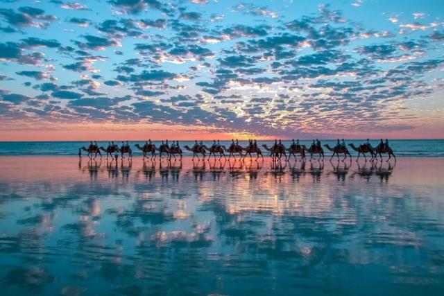 Μπρουμ, Αυστραλία