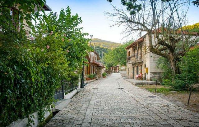 Ζαρούχλα χωριό
