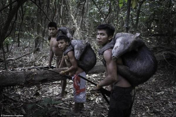 Φυλή Άβα: Η φυλή που οι γυναίκες θηλάζουν τα άγρια ζώα και οι άντρες ζουν αρμονικά με τα ζώα του δάσους όπως τα αγριογούρουνα