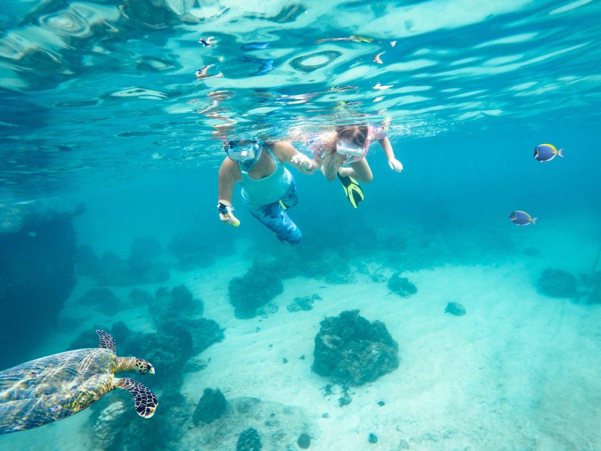 Στο βυθό της θάλασσας,  νησί Πίτκαιν