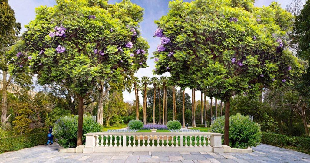 Ο Εθνικός Κήπος, μια όαση δροσιάς στο κέντρο της Αθήνας