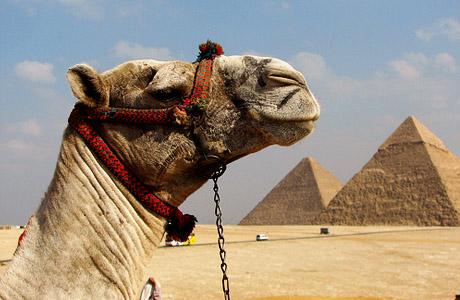 Μήπως έφτασε η ώρα να επισκεφθείς την Αίγυπτο; Δες 7 λόγους που σίγουρα θα σε πείσουν