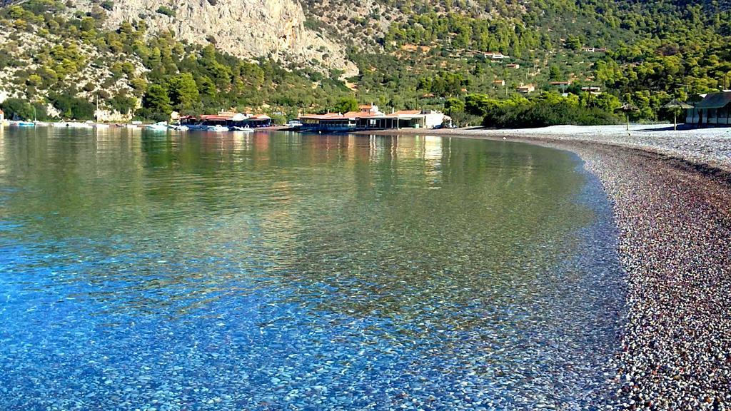 5 κοντινοί προορισμοί στην Αθήνα δίπλα στη θάλασσα! Καλό φαγητό παρέα με δροσερό ουζάκι! (photos)