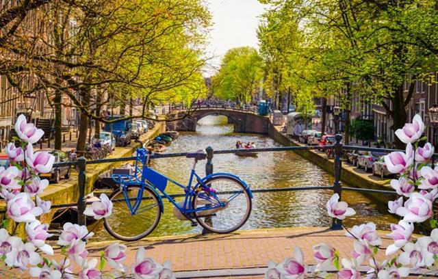 Άμστερνταμ - άνοιξη, λουλούδια