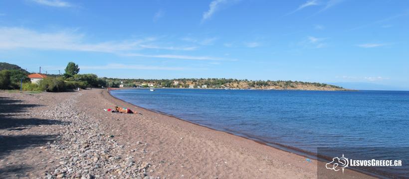Οι 10 κορυφαίες παραλίες της Λέσβου που θα βουτήξεις φέτος το καλοκαίρι! (photos)