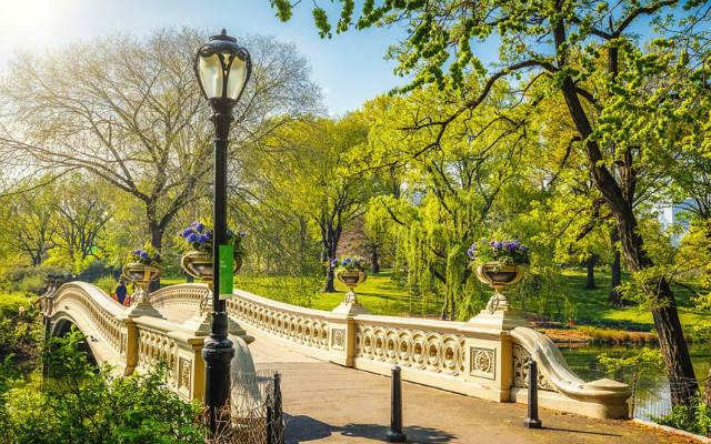 Σέντραλ Πάρκ, Νέα Υόρκη
