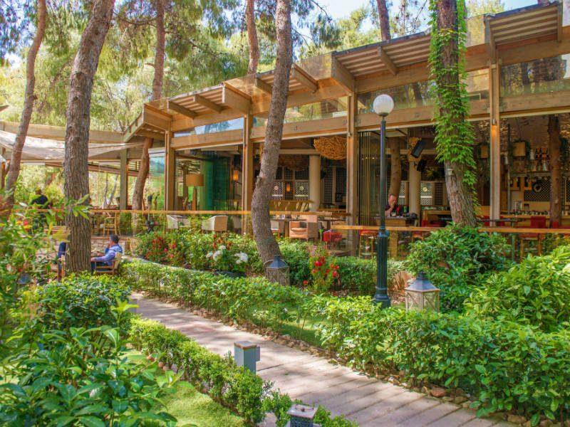 """Αθήνα: 7 υπέροχα μαγαζιά με κήπους και """"μυστικές"""" αυλές για να απολαύσεις τον καφέ σου!"""