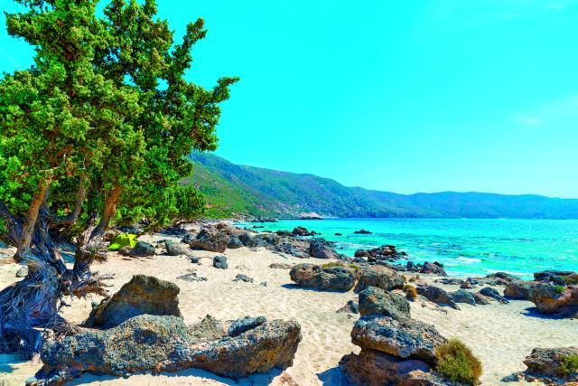 Κεδρόδασος Κρήτη