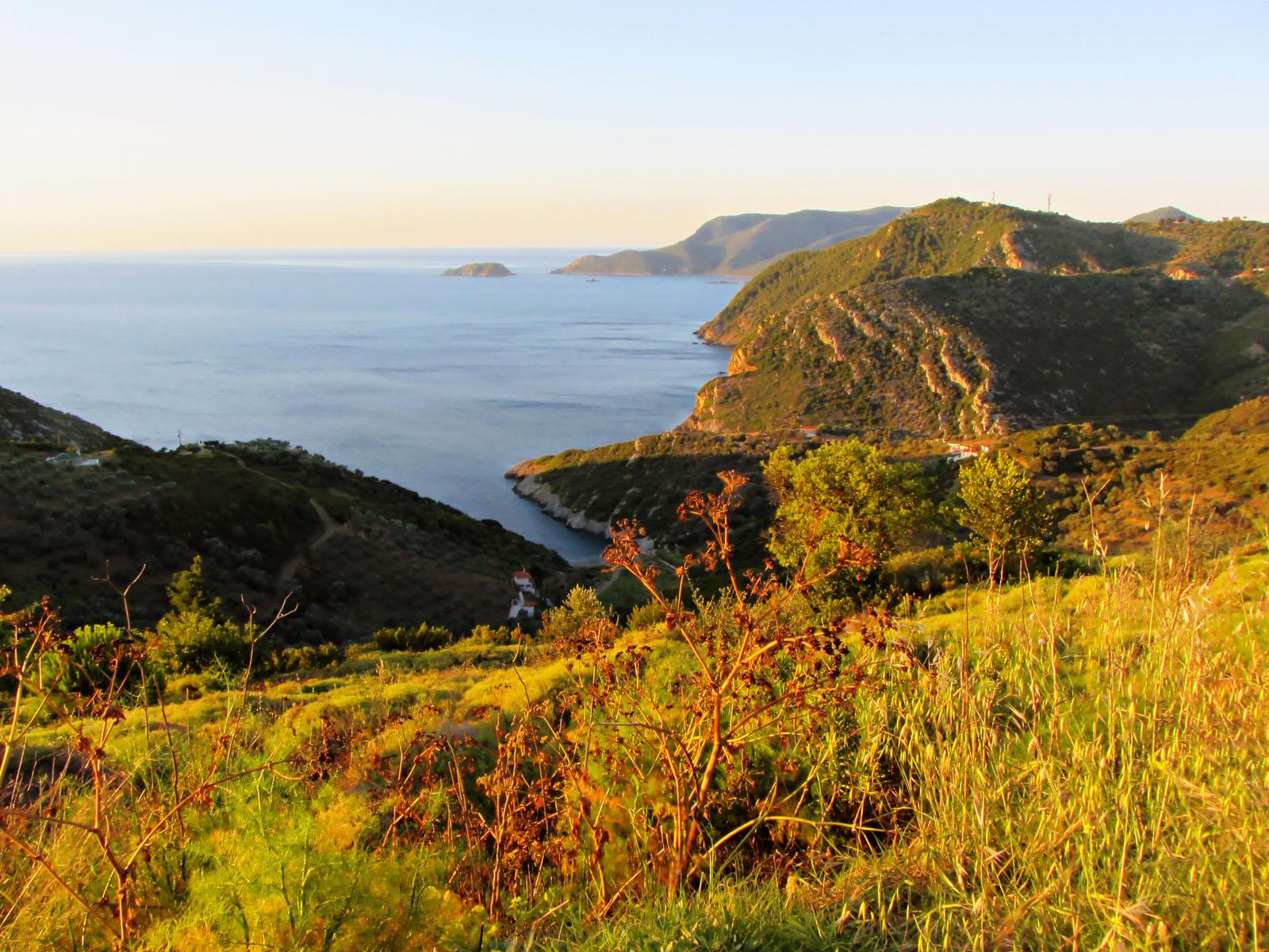 Ποιο είναι το νησί του Αιγαίου με τα πευκόφυτα δάση, τις ειδυλλιακές παραλίες και την απόλυτη ηρεμία; (photos)
