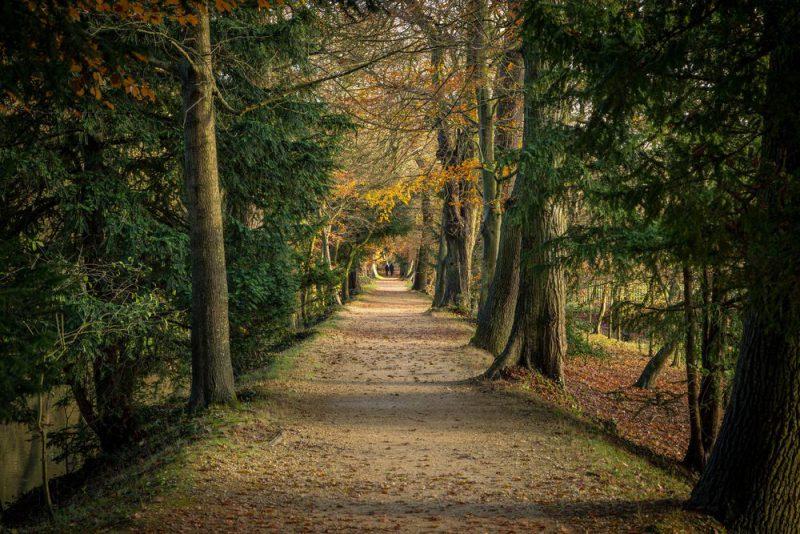 Ανακαλύψτε τους- Αυτοί είναι οι 10 πιο εντυπωσιακοί κήποι του πλανήτη