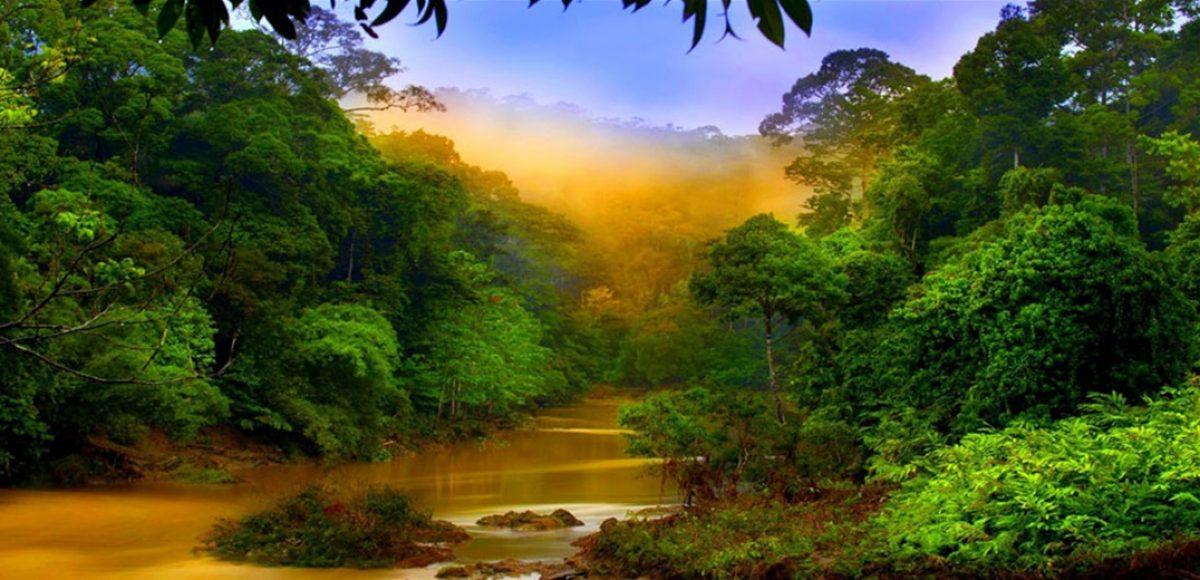 Ταξίδι στο Βόρνεο- Ένας τόπος παραμυθένιος με ποτάμια, σπήλαια και «μαγικά» νερά-  (PHOTO)