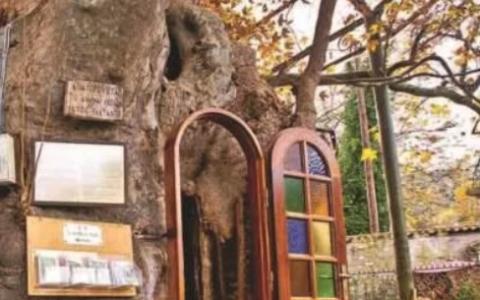 Το πανέμορφο εκκλησάκι της Παναγίας της Πλατανιώτισσας στην «αγκαλιά» τριών ιερών πλατάνων
