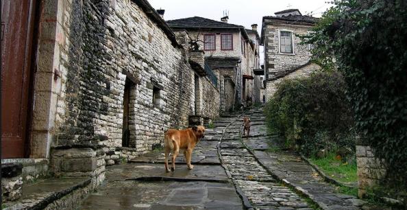 To ελληνκό χωριουδάκι, Δίλοφο, μια μοναδική εμπειρία που πρέπει να ζήσετε!