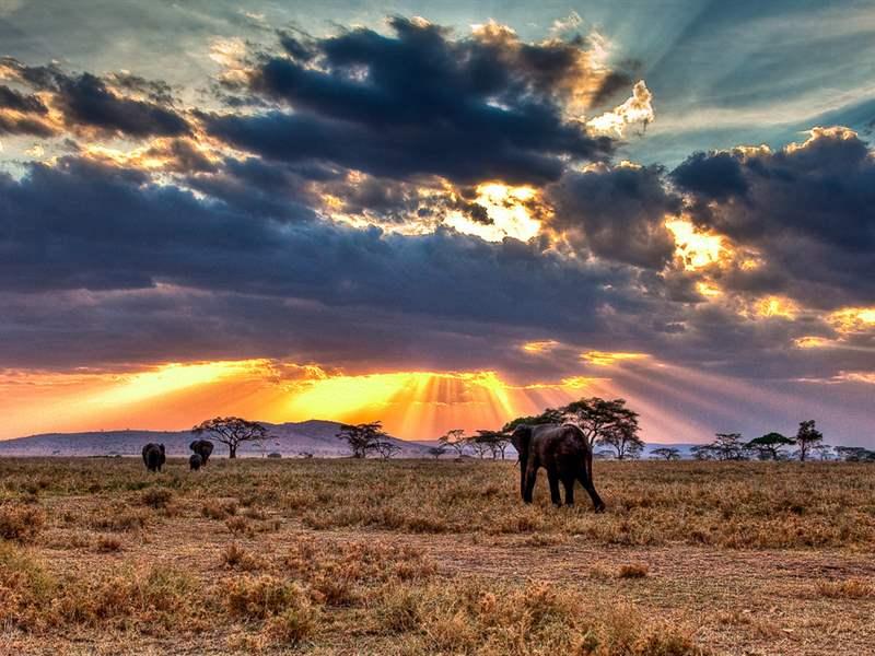 Τανζανία: Ένα δυσέβρετο διαμάντι στην καρδιά της Αφρικής