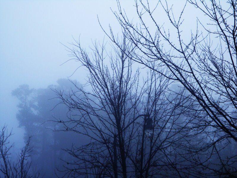 Καιρός (01-02/12): Σταδιακή βελτίωση του καιρού-Προσοχή στον πρωινό παγετό!