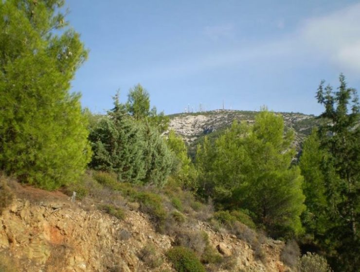 Εδώ θα κάνετε την βόλτα σας στην εξοχή, χωρίς... να απομακρυνθείτε καν από την Αθήνα!