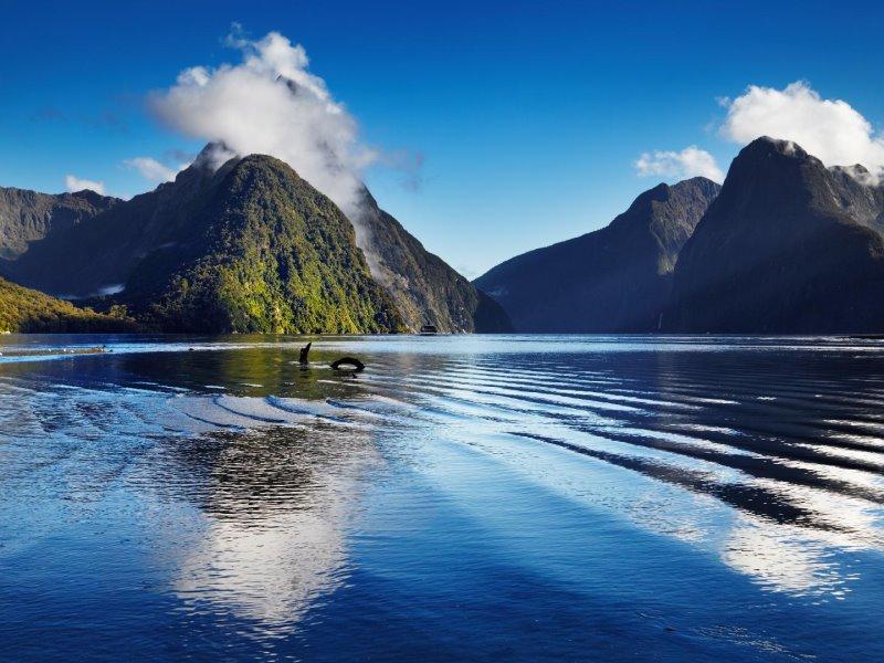 Νέα Ζηλανδία: Βρήκαμε τα 11+1 μυστικά της μακρινής χώρας για να την γνωρίσετε!