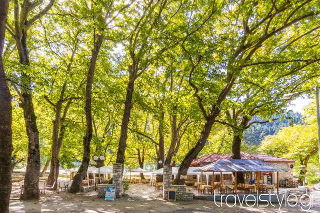 Πάρκο Κεφαλόβρυσο: Μοναδικές στιγμές χαλάρωσης στην Ευρυτανία