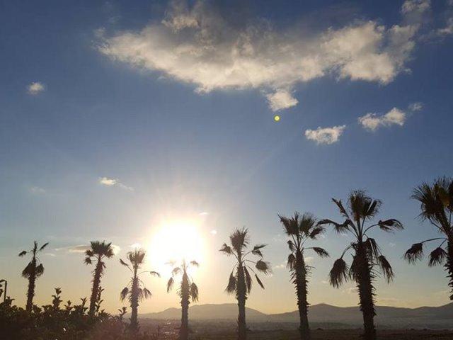 Θέα Δηλαβέρη, Μεταμόρφωση Αττικής