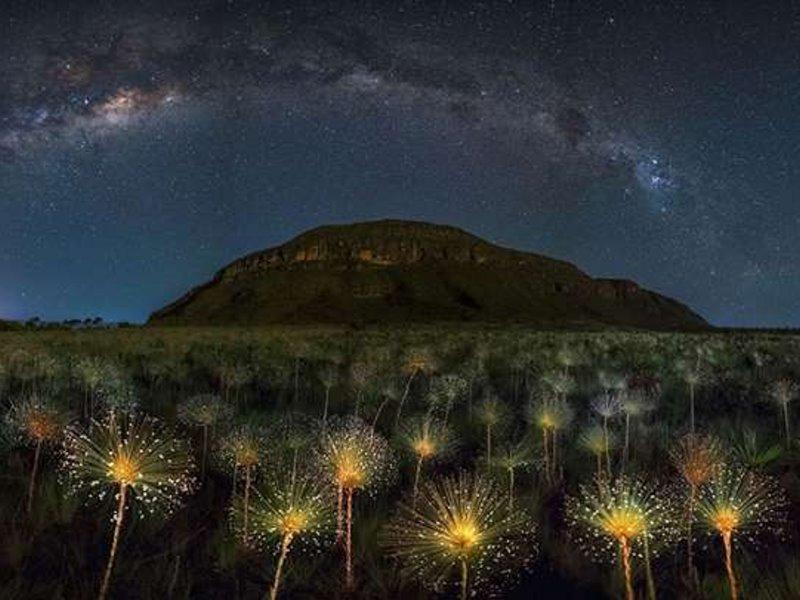 Δείτε, εδώ, στιγμιότυπα από την εκπλητική ομορφιά του πλανήτη μας! (photos)