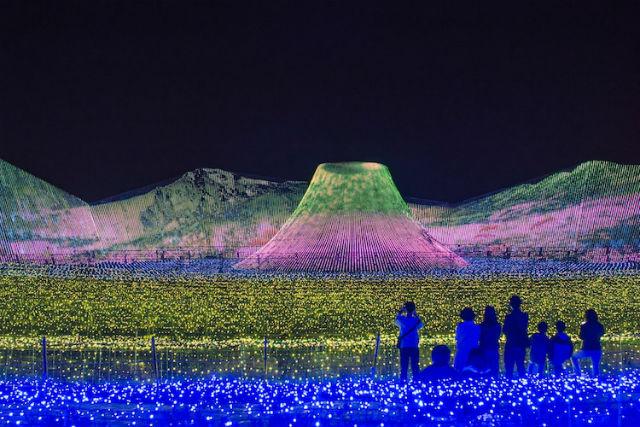 Ένα πάρκο στην Ιαπωνία που γεμίζει με φώτα κάθε χρόνο!