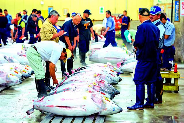 Δείτε που βρίσκεται η μεγαλύτερη ψαραγορά του κόσμου!