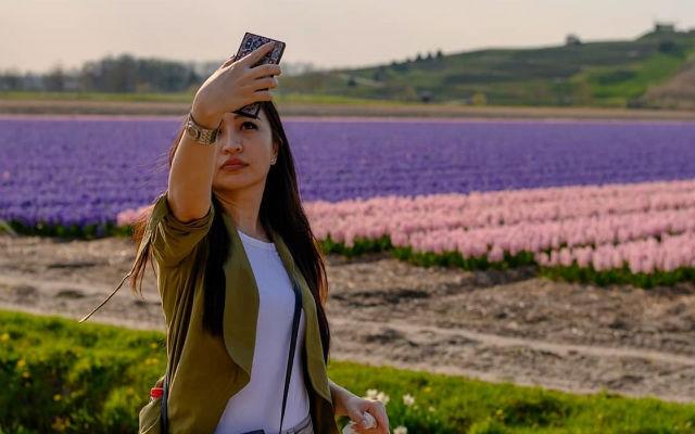 Ολλανδία: Καταστρέφονται οι διάσημες τουλίπες της χώρας!