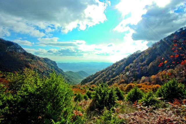 Παγγαίο Όρος Μακεδονία