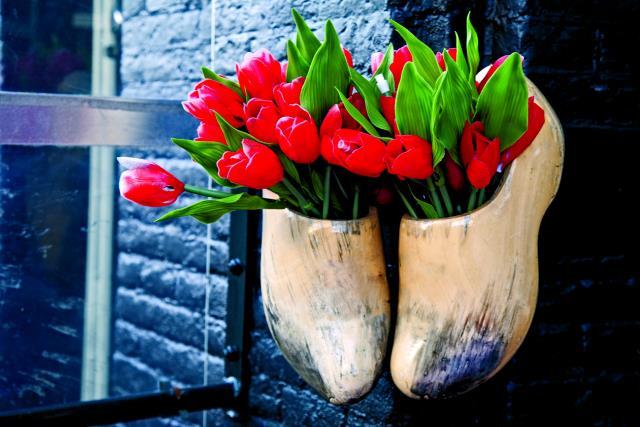 Άμστερνταμ λουλούδια