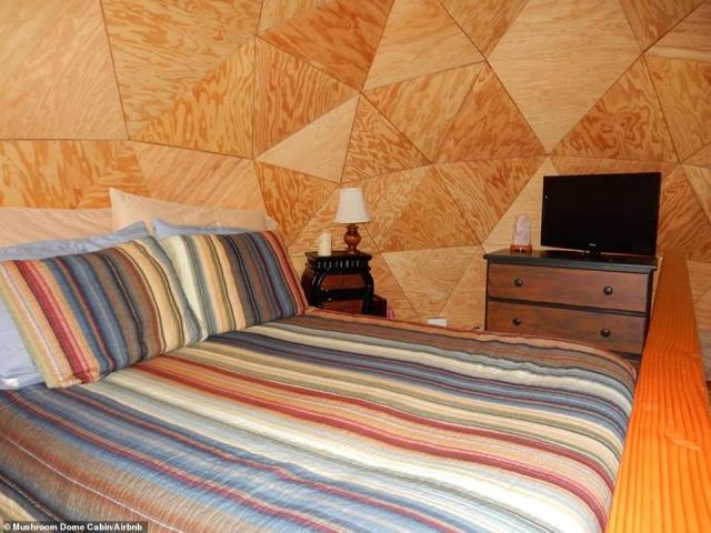 Mushroom Dome Cabin, Airbnb