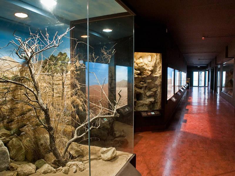 Κρήτη: Αποχαιρετισμός του καλοκαιριού με διανυκτέρευση σε… μουσείο!