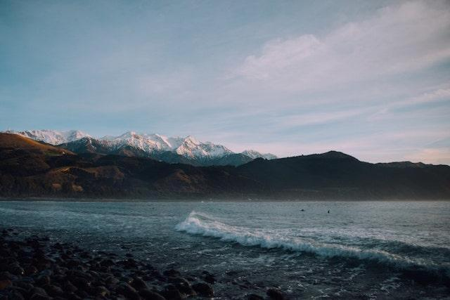 Καϊκούρα, Νέα Ζηλανδία
